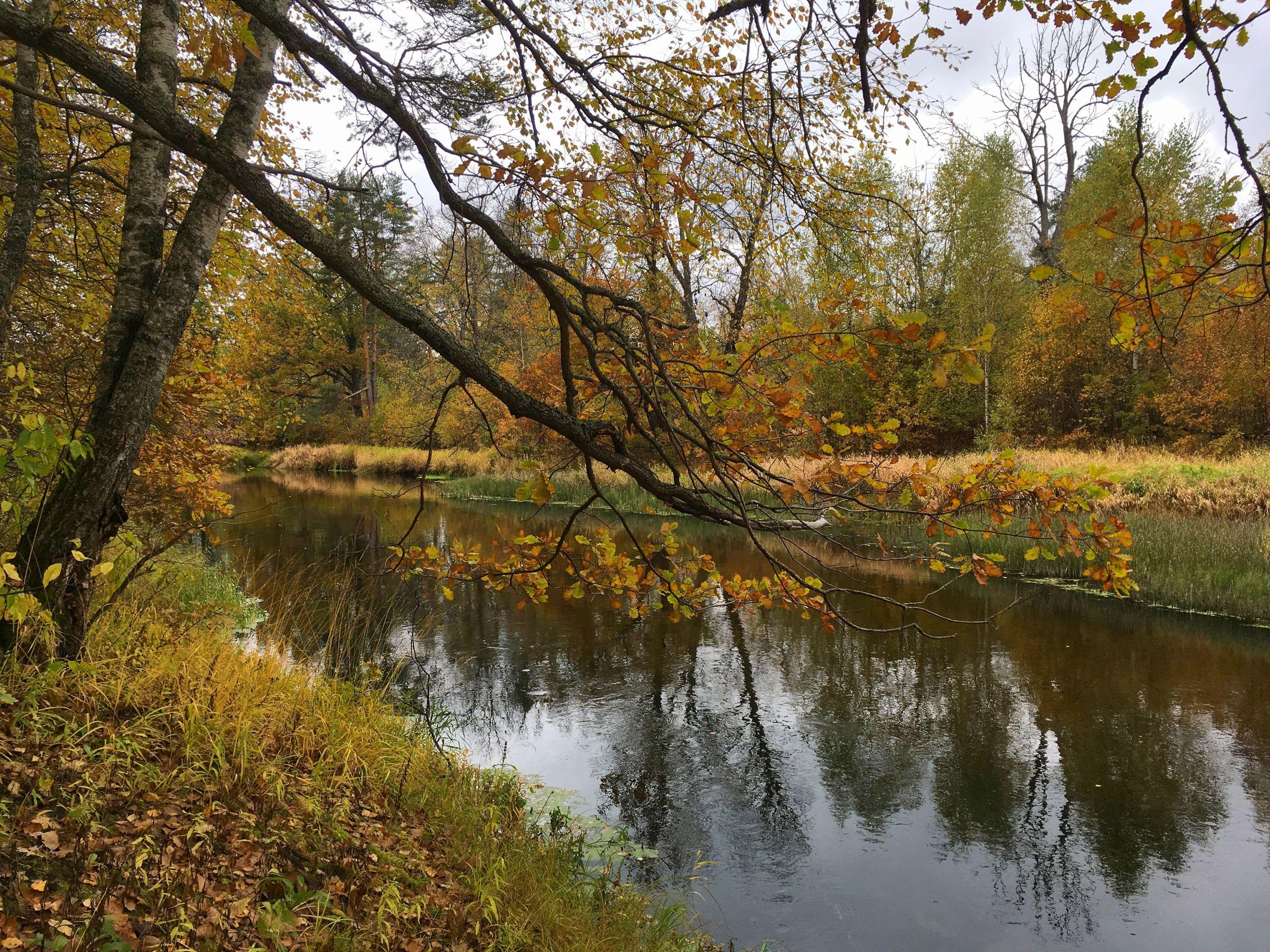 kerzhenets-reka