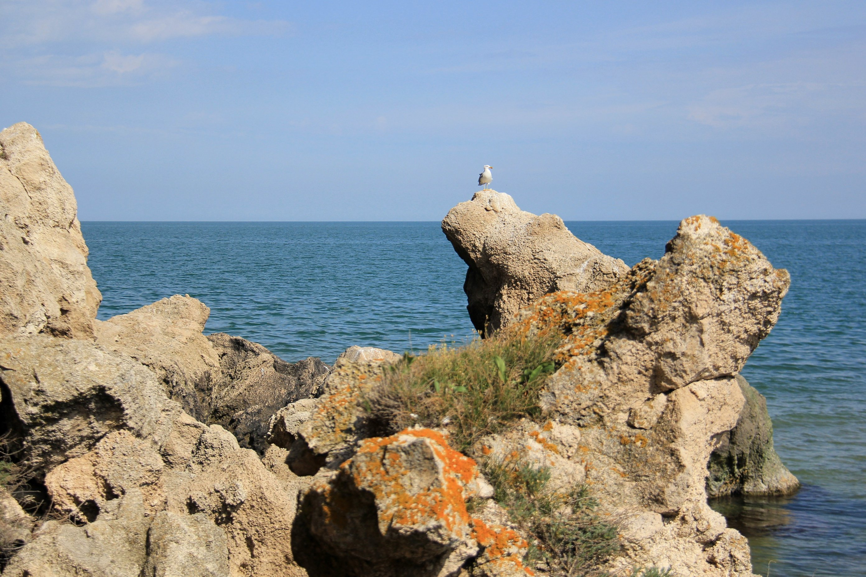 azovskoe-more