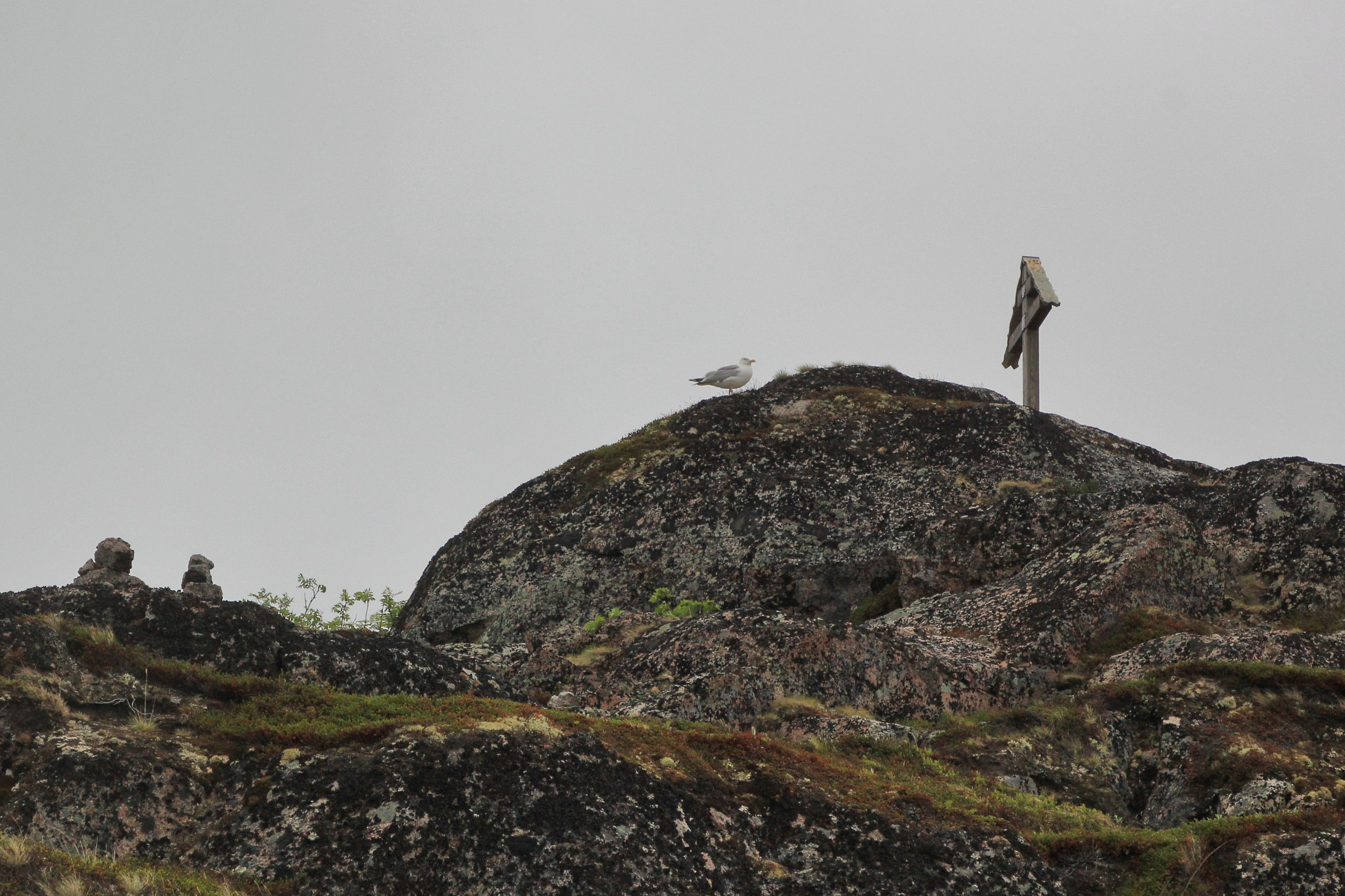 teriberka-kolskij-poluostrov