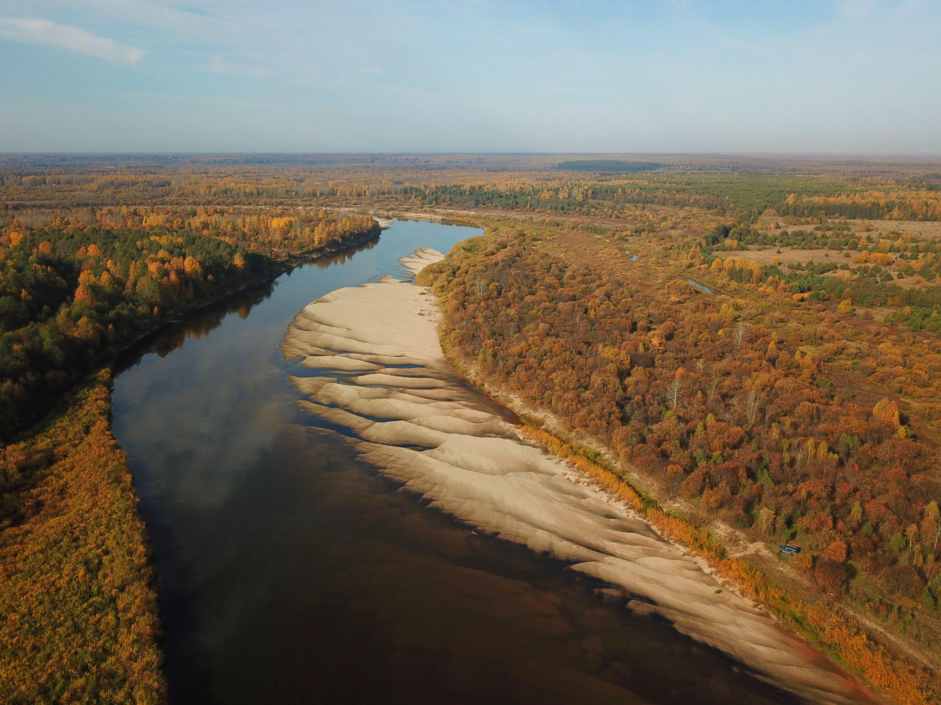 reka-vetluga-osenju